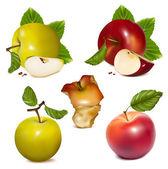 červená a zelená jablka. — Stock vektor