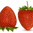 Strawberries.  — Image vectorielle