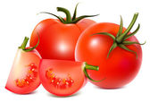 Illustration of tomatoes — Stock Vector