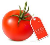 Tomato. — Stock Vector