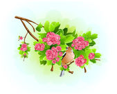 Bird on the flowering branch. — Stock Vector