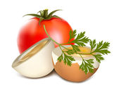 Boiled egg and tomato — Stock Vector