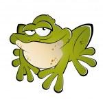 Funny cartoon frog — Stock Vector #12525703