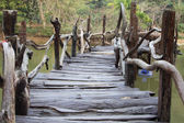 Wood bridge — Stockfoto