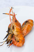 Grilled shrimp — Stock Photo