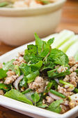 Larb chicken salad. — Stock Photo