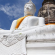 Pagoda and Buddha Status at Wat Yai Chaimongkol, Ayutthaya, Thai — Stock Photo