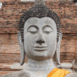 Buddha Status at Wat Yai Chaimongkol, Ayutthaya, Thailand  — Stock Photo