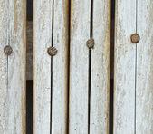 Bamboo as a backdrop. — Stock Photo