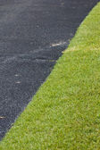Asphalt with grass on the golf course — Stock Photo