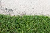 Yeşil çim ve kum golf sahasında — Stok fotoğraf