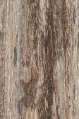 Bruin houtstructuur — Stockfoto