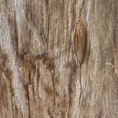 Staré dřevěné — Stock fotografie