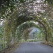 Archway in garden — Stock Photo #38408047