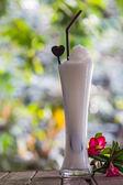 Coconut milk ice smoothie — Stock Photo
