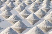 Heap of sea salt  — Stock Photo