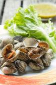 Owoce morza — Zdjęcie stockowe