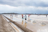 Saline in Samutsakorn, thailand — Stock Photo