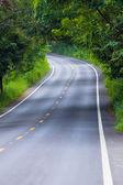 путь — Стоковое фото