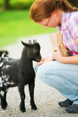 Feeding a Baby Goat — Stock Photo