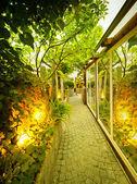 Garden Illumination — Zdjęcie stockowe