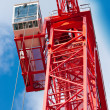 Red Crane - Stock Photo