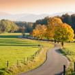 Постер, плакат: Winding Country Road through autumnal Landscape