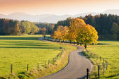 Winding Country Road through autumnal Landscape — Stock Photo