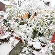 Stock Photo: Garden with Snow