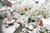 Garden with Snow — Stock Photo