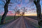 грунтовая дорога с клена в зимний рассвет — Стоковое фото