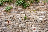 Ancient Stone Wall — Stock Photo