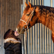 Horse Kiss — Stock Photo #18200067