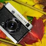 kamera på höstlöv — Stockfoto
