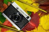 Camera on autumn leaves — Stock Photo
