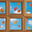 Autumn Window - Stock Photo