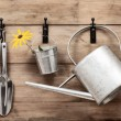 Garden Tools — Stock Photo #12569813