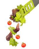 Pegador de salada — Foto Stock