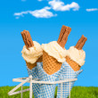 Stock Photo: Summer Ice Creams