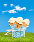Summer Ice Creams — Stock Photo