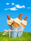 Summer Ice Creams — Stock Photo