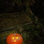 citrouille au cimetière — Photo #13840797