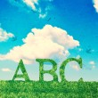 Alphabet Letters In Grass - Stock Photo