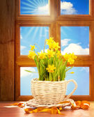 Spring Window — Stock Photo