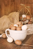 Speckled Eggs — Stock Photo