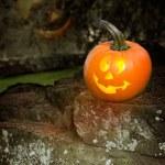 Halloween Jack O Lanterns — Stock Photo