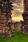 Abbey Ruins — Stock Photo