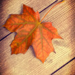 Autumn Leaf — Stock Photo #32887839