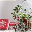 Holiday Birdcage — Foto Stock