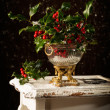 christmas holly — Stock Photo #35793349